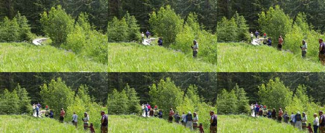 composite of six images each showing a forest with progressively more people