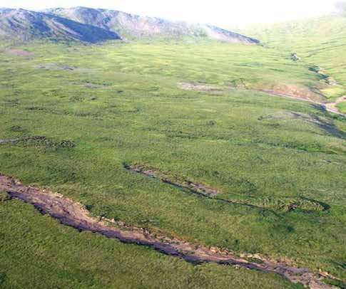 aerial view of a treeless hillside with numerous slumps