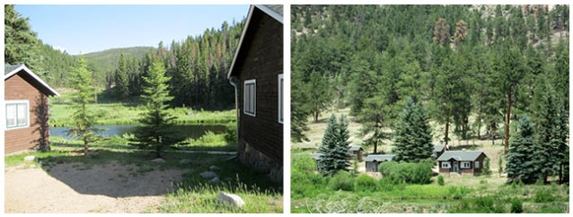 Two views show the row of cabins among the pine trees; one view from beside, one from a distance.
