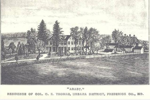 A drawing of the buildings and trees of the Thomas Farm landscape, also known as Araby.
