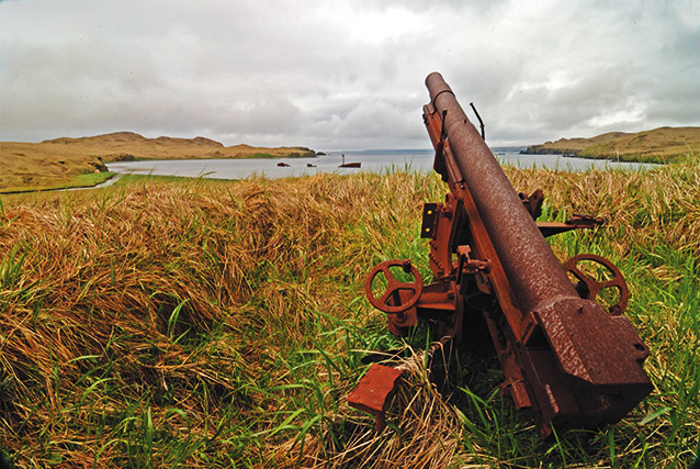 A large rusted gun sits near water, pointing at sky.