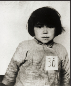 Image of a small child, similar to a mug shot. The number 36 is pinned to shirt.