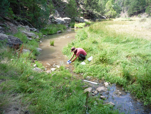A gloved staff person crouches by a stream, collecting a water sample