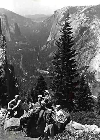 Sailors look out at Yosemite Valley in front of evergreen tree