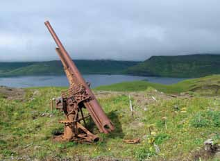 Rusted gun sitting in grass with harbor in background