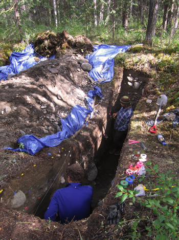 Two researchers stand in a deep rectangular trench in the woods