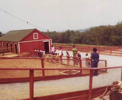 Several adults and a group of kids stand along a red fence by a barnyard.