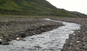 a small unstable stream cuts through a rocky area