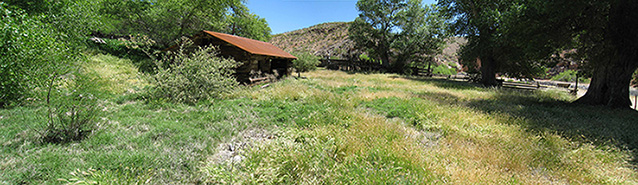 A panoramic of the ranch yard with the ranch house, tall grass, and scattered trees and shrubs.