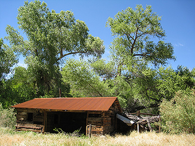 A barn made of wood, railroad ties, and a metal roof stands under tall, leafy trees.