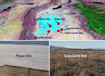Overview of five study sites (top), barren, sandy playa (bottom left), and grassland (bottom right)