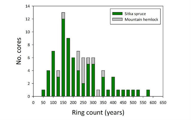 figure of ring count in Sitka spruce and Mountain hemlock