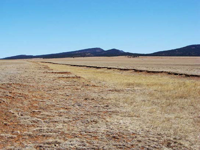 Trail ruts still visible out to the horizon in the grassland of Fort Union National Monument