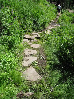 stepping stones on the trail