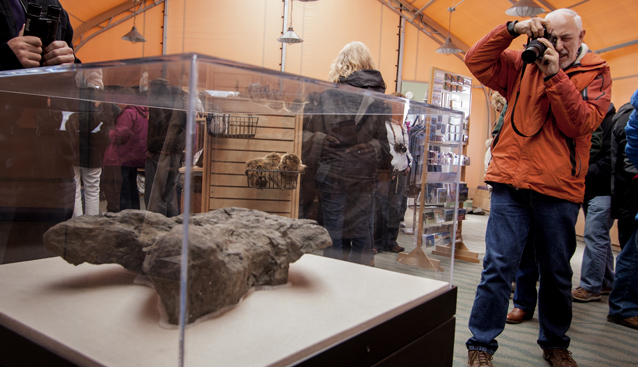 a photographer takes a picture of a dinosaur track in an exhibit case