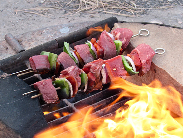 Shish kabobs over the fire