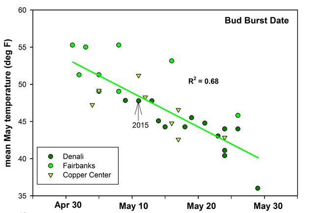 graph showing that bud burst occurs more frequently with warmer temperatures
