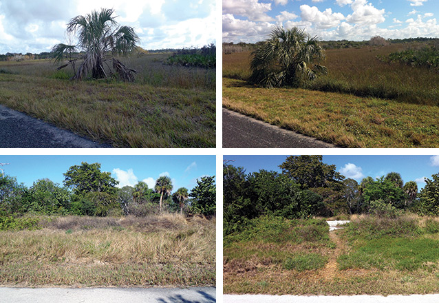 Two pairs of photos at Everglades comparing degree of impact to sites as a result of geocaching