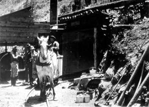 Black and white photo of a horse next to a mine