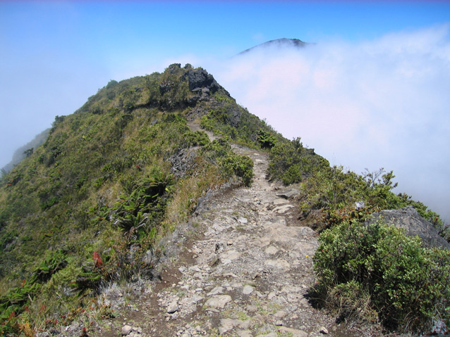 A narrow, rough trail follows the peak of a ridge above the clouds.