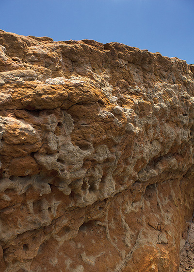 Fossil soils at Cabrillo National Monument reveal marine deposits