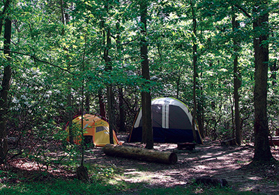 Tent camping at Greenbelt Park, Maryland