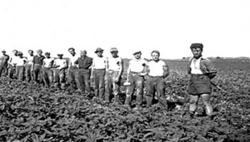 Black and white photo of a long line of men standing in a field