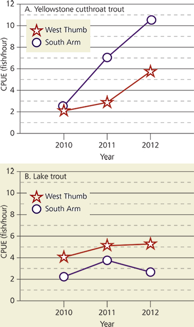 Graphs showing catch per unit effort of cutthroat trout (left) and lake trout (right)