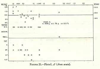 image of an old hand draw graph