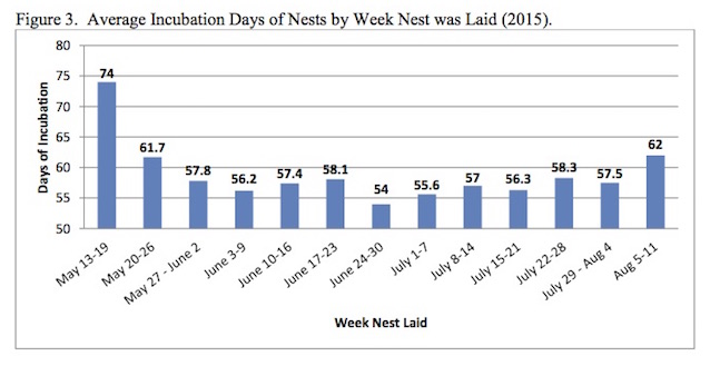 Figure 3.  Average Incubation Days of Nests by Week Nest was Laid (2015).