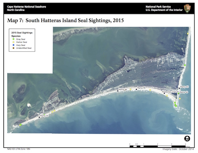 Map 7: South Hatteras Island Seal Sightings, 2015
