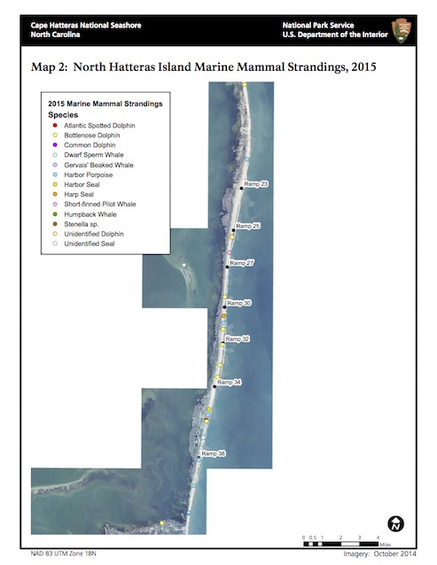 Map 2: North Hatteras Island Marine Mammal Strandings, 2015