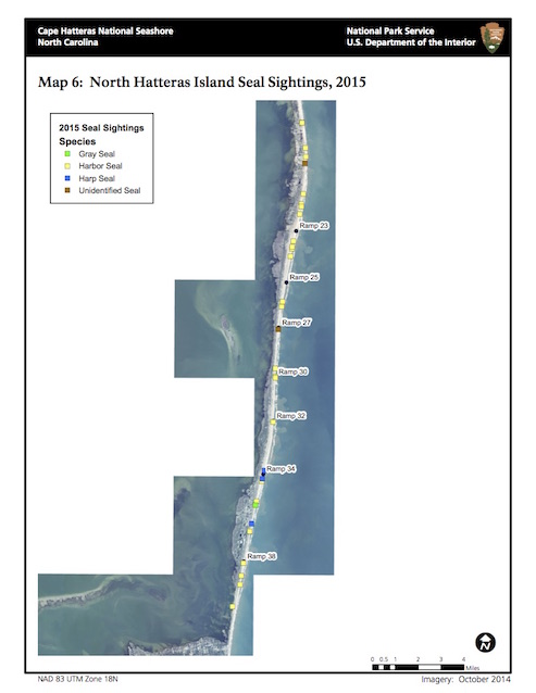 Map 6: North Hatteras Island Seal Sightings, 2015