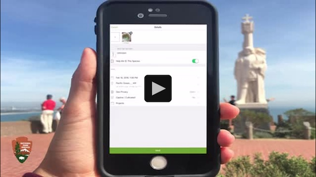 iPhone showing how to setup iNaturalist