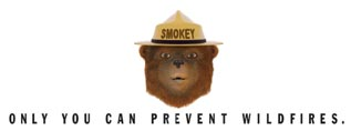 "Cartoon graphic of a bear wearing a ranger hat, text ""Only You Can Prevent Wildfires"""