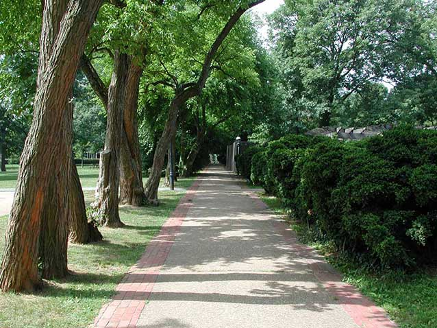 A long, straight walkway is lined by a row of arching trees on one side and boxwoods on the other.