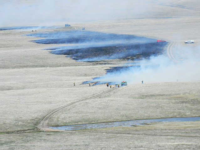 Aerial view of firefighters conducting prescribed burn.