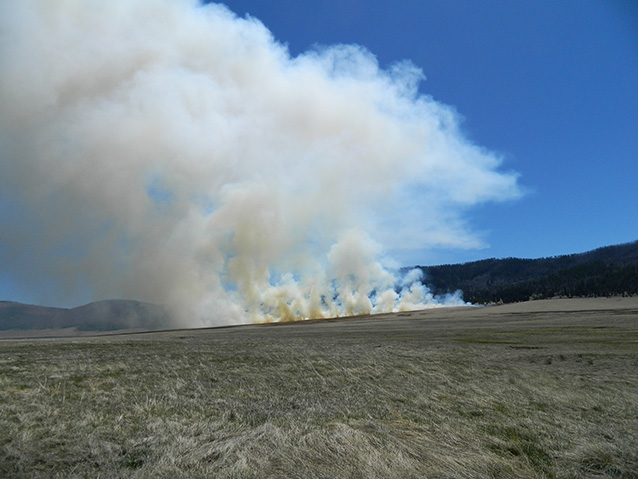 Smoke from prescribed burn