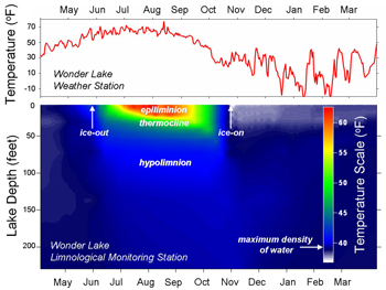 Graph displaying average water temperature compared to depth