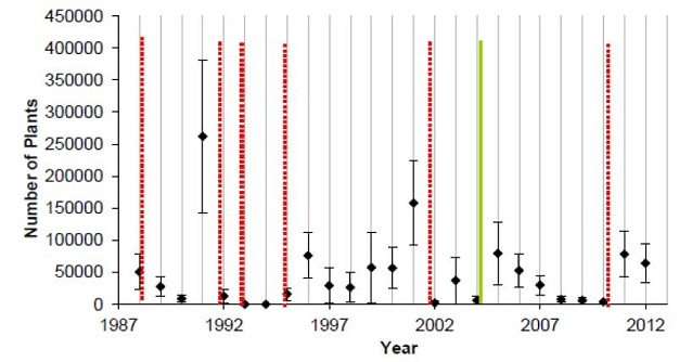 Graph depicting population variability of Missouri Bladderpod over time at one site.