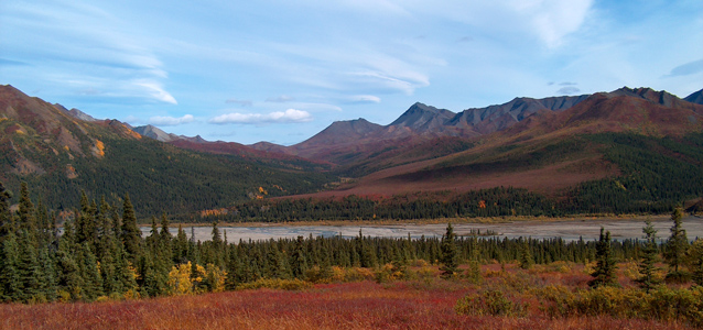 Tundra landscape in the fall, orange and red colors