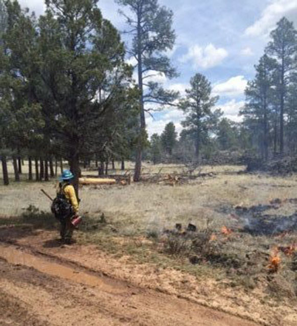Firefighter with a handtool on the fireline