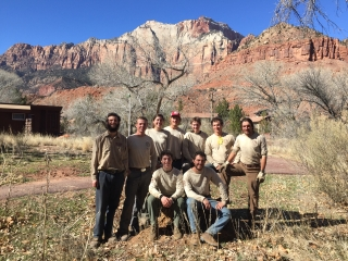 Watchman Campground Fuel Reduction Project (U.S. National ...