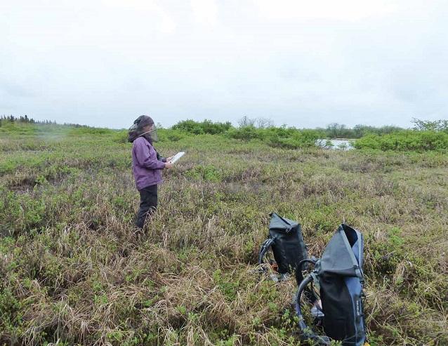 Archiving Southwest Alaska's National Park bird data into eBird and
