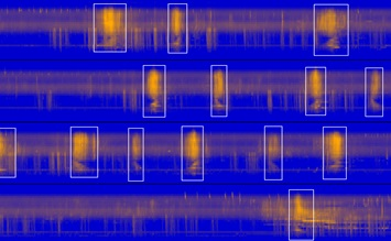 computer generated image showing sounds recorded in orange wavelengths