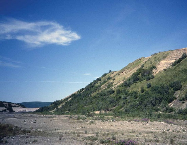 shrub covered bluff next to a valley