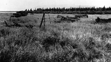 black and white photograph of abandoned log houses in a grassland