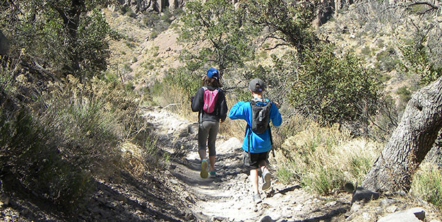 Talia leads younger brother Nate on a hike in Chiricahua National Monument.