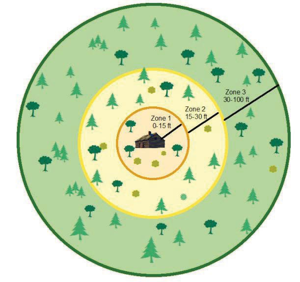 a diagram showing the recommended distance of tree clearing around cabins