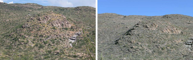 Javalina Hill in 2007 (left) and 2010 (right). Golden buffelgrass is clearly visible in 2007.
